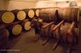 Le chai du whisky Gouden Carolus Single Malt