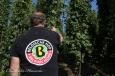 Eric Lagache revendique la qualité du houblon belge
