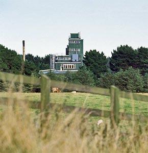 La distillerie Cooley