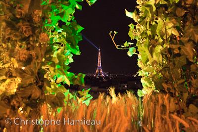 Brasseurs des Champs par Heineken (Portfolio)