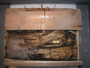 La caisse de whisky de Sir Shackleton