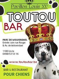 A Bruxelles, Médor peut s'offrir une mousse au Toutou Bar…