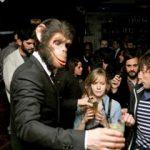 Monkey Crashers, c'est party !