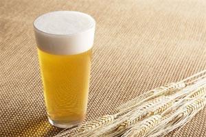 Déguster la bière