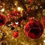 Succès pour les Soirées Maltées Bières de Noël
