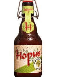 La Hopus Primeur arrive demain !