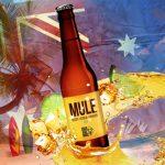 Le Café Oz sort sa bière blanche bio aromatisée, Mule