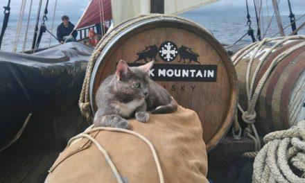 Le whisky Black Mountain embarqué pour une longue virée à la voile !