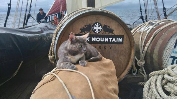 Le Black Mountain embarqué pour une longue virée à la voile !
