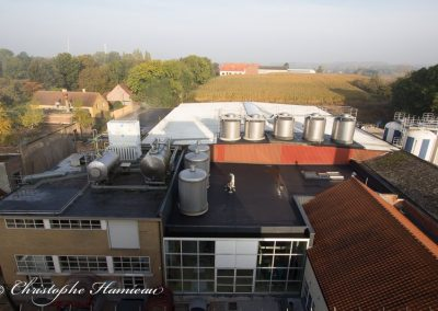 brasserie-mort-subite-27