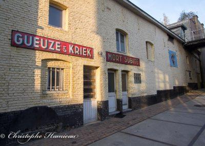 brasserie-mort-subite-7
