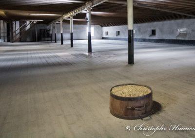 The BenRiach Distillery. L'aire de maltage et un peu d'orge